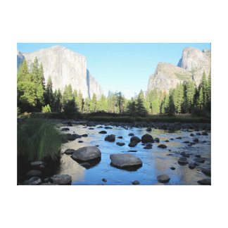 Yosemite Valley in the summer Canvas Prints