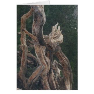 Yosemite Wood Carving Card