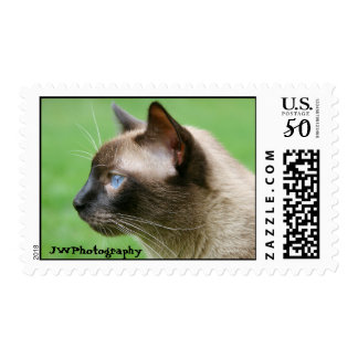 Yoshi the Siamese Cat Postage Stamps