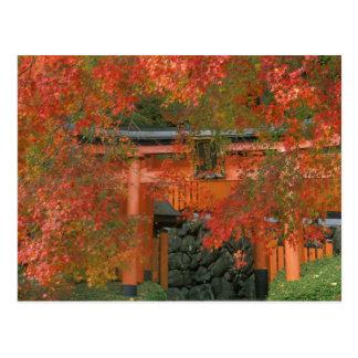Yoshimine Temple, Nagaoka, Kyoto, Japan Postcard