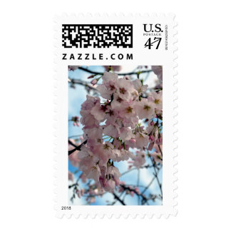 Yoshino Cherry Blossoms Postage