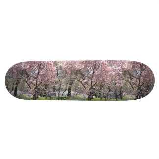 Yoshino Cherry Board