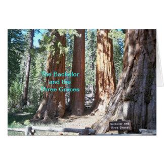 Yosmite National Park Card