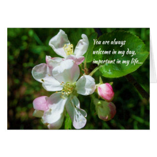 You are always welcome... greeting card