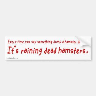 You are an Idiot (Dead Hamster) Bumper Sticker