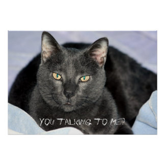 You Are Annoying Me, You talking to Me? Poster