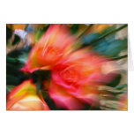 you are as welcome as the flowers in may greeting cards