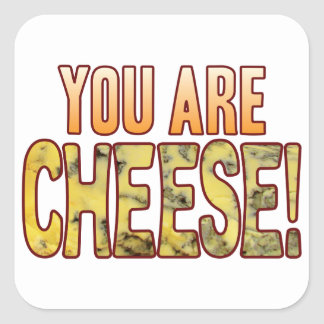 You Are Blue Cheese Square Sticker