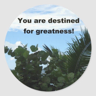 You are destined for greatness! classic round sticker
