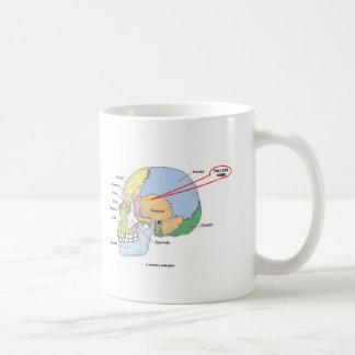 You Are Here (Brain Temporal Region Anatomical) Coffee Mug