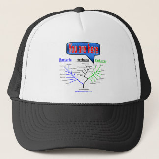 """""""You Are Here"""" Evolutionary Tree Trucker Hat"""