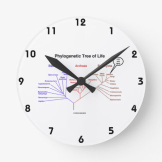 You Are Here Phylogenetic Tree Of Life (Biology) Round Wallclock