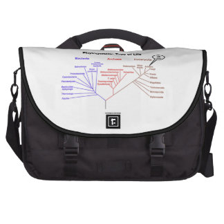 You Are Here Phylogenetic Tree Of Life Biology Laptop Commuter Bag