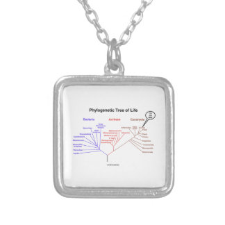 You Are Here Phylogenetic Tree Of Life Biology Pendant