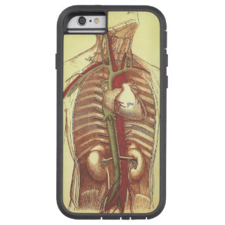 YOU are in my heart vintage anatomy Tough Xtreme iPhone 6 Case