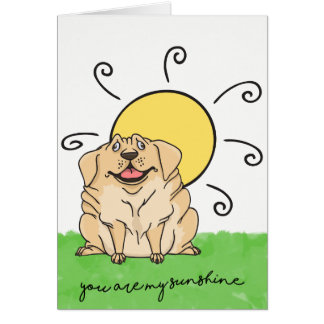 You Are My Sunshine Happy Puppy Love Card