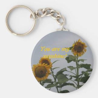 You are my sunshine! Keychain