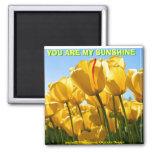 YOU ARE MY SUNSHINE(Mojisola Gbadamosi Okubule) Fridge Magnet