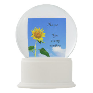 'You are my sunshine ' personalised Snow Globe