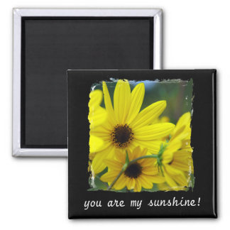 You Are My Sunshine Sunflower Magnet