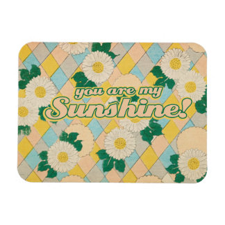 You are my SUNSHINE Vinyl Magnets