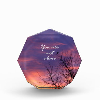 You Are Not Alone Awards