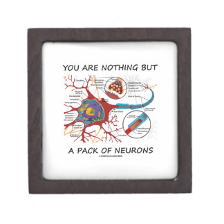You Are Nothing But A Pack Of Neurons (Synapse) Jewelry Box