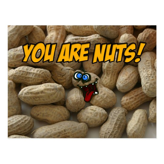 you are nuts! postcard