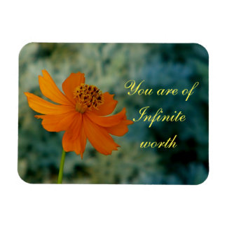 you are of infinite worth magnet