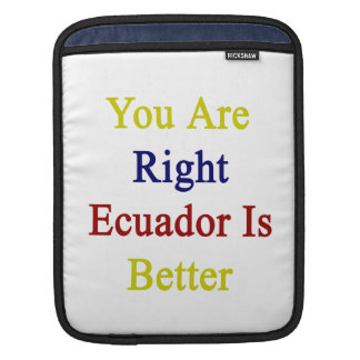 You Are Right Ecuador Is Better iPad Sleeves