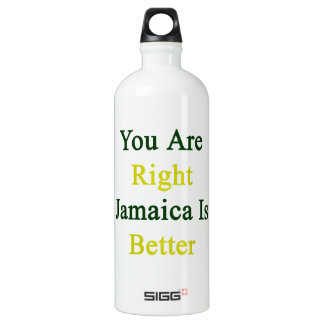 You Are Right Jamaica Is Better SIGG Traveler 1.0L Water Bottle