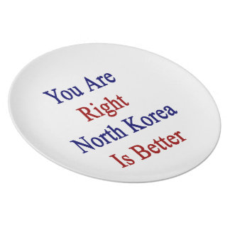 You Are Right North Korea Is Better Party Plate