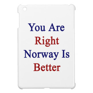 You Are Right Norway Is Better iPad Mini Cover