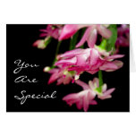 You Are Special Greeting Card