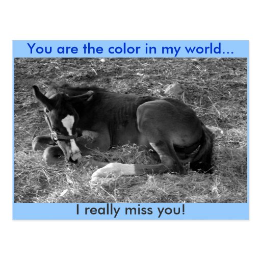 You are the color in my world post card