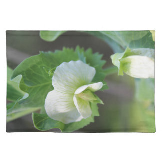 You are the Pea to my Pod Cloth Placemat