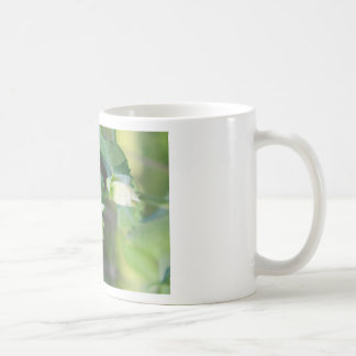 You are the Pea to my Pod Coffee Mug