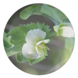 You are the Pea to my Pod Melamine Plate