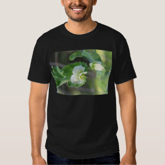 You are the Pea to my Pod Tee Shirt