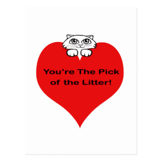 You are the Pick of the Litter Postcard