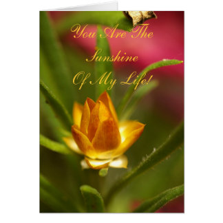 You Are The Sunshine Of My Life! Card