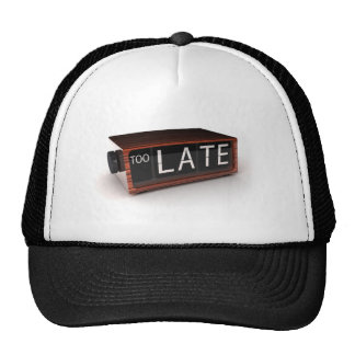 You are too late hat