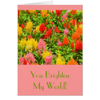"""YOU BRIGHTEN MY WORLD""/ANNIVERSARY CARD/CELOSIA CARD"