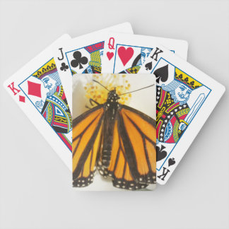 You brighten my world! butterfly bicycle playing cards