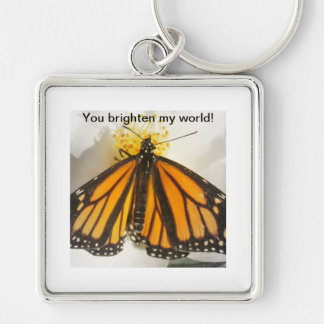 You brighten my world! butterfly Silver-Colored square keychain