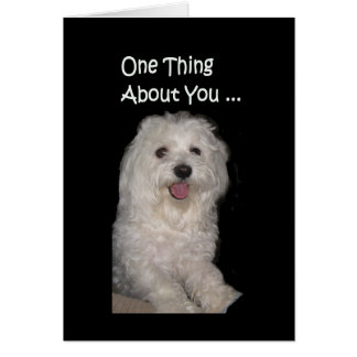 You Can Always Make Me Smile Maltese Humor Card