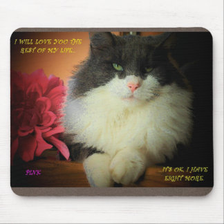 You Can Have One Of My Nine Lives Mouse Pad