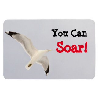 You Can Soar! Magnet