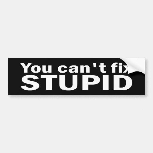 You cant fix Stupid Bumper Sticker Car Bumper Sticker
