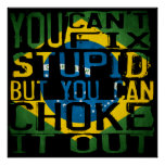 You can't fix stupid, but you can choke it out poster